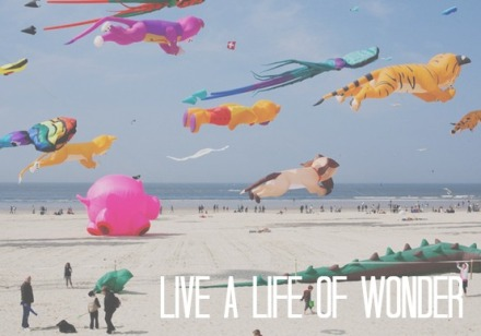 live, life, wonder, splendor, wander, joy, love, awesome, giant, kites, beach