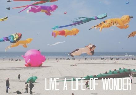 live, life, wonder, splendor, wander, joy, love, awesome, giant, kites, beach