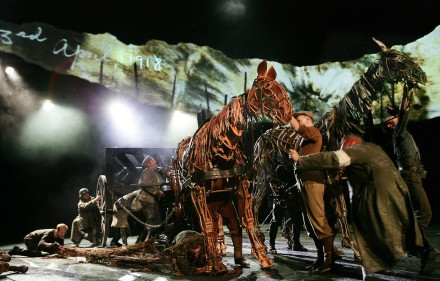 The-cast-of-War-Horse-photo